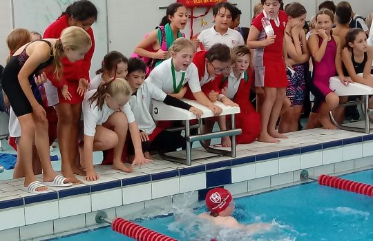 ISA swimming competition